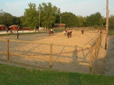 Poney-Club de Darel en Agenais